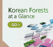 Korea Forest Service Come nestle in bosom of nature,our green forest