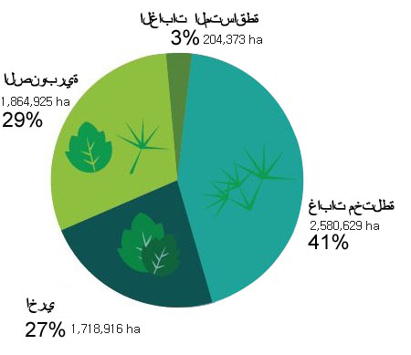 Percentage of Forest Area by Forest Types