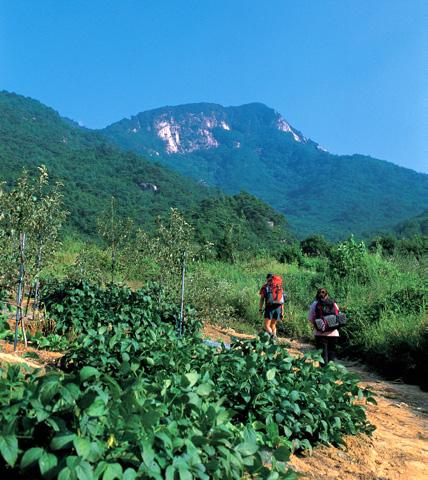 Huiyang Mountain
