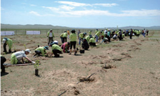 Planting activities in Mongolia