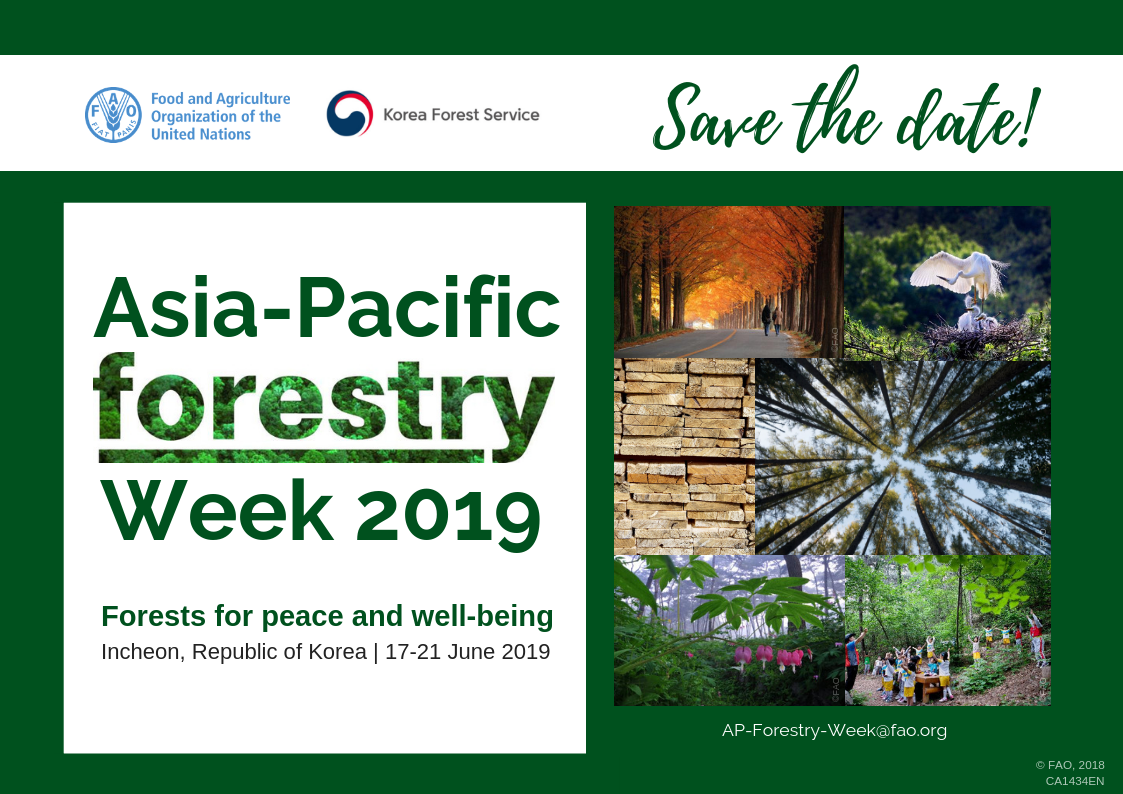 KFS hosts the 4th Asia-Pacific Forestry Week image
